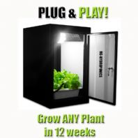 Northern Lights The Producer Grow Box